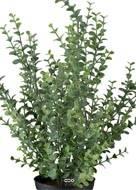 Eucalyptus artificiel en pot, H 40 cm D 28 cm