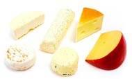 Fromages artificiels assortis base chevre en lot de 6 en Plastique soufflé