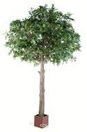 Chene arbre artificiel H 210 cm L 120 cm tronc naturel en pot
