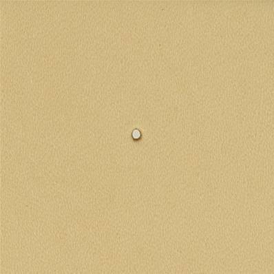 Embout emporte-pièce de précision - ROND - 1 mm