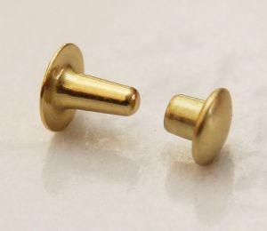 Lot de 100 petits rivets en laiton (T2) finition laiton