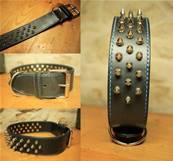Lot de 10 rivets pointes pour collier de chien - 1/2'' - NICKELE