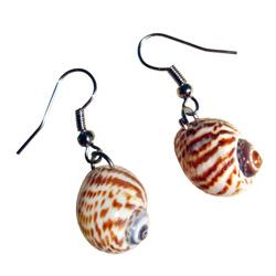 Boucles d'oreilles Originales Petits Coquillages naturels
