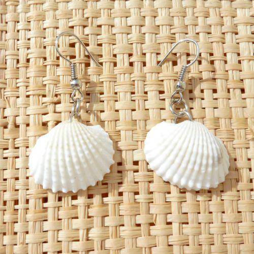 Boucles d'oreille petits coquillages naturels de plage