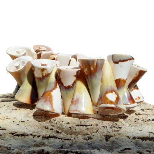 Bracelet original en coquillages naturels porcelaine Strombus