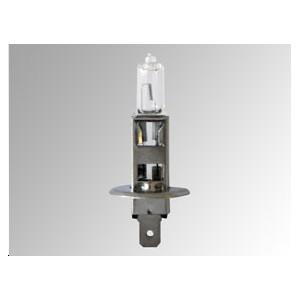 Ampoule 12V 55W P14,5S, H1