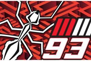 MM93 Ant Drapeau Multicolore