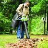 Souffleur et Aspirateur à feuilles sans fil GREENWORKS 40V (sans batterie ni chargeur)