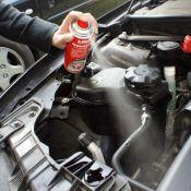 Spray Répulsif Anti-martre pour voiture