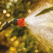 Pulvérisateur manuel de jardin à pression RAPTOR 16 Capacité 16L