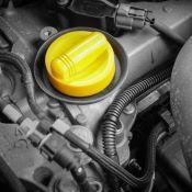 Gaine de protection Anti-martre pour voiture