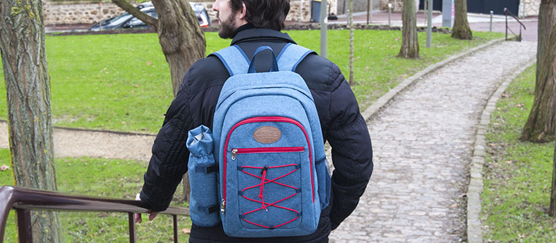 picnic backpack urban for 2