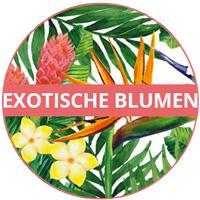 Melamin-Geschirrthema Exotische Blumen