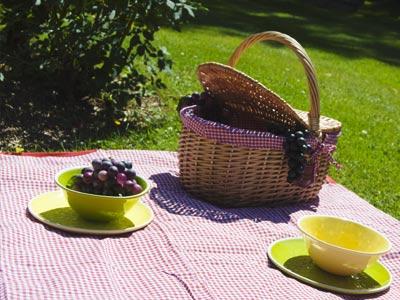 Pourquoi choisir une nappe Les Jardins de la Comtesse ?