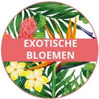 inzameling van melamine serviesgoed Exotische bloemen