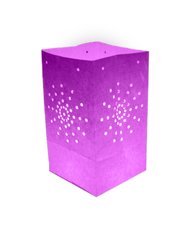 Pack de 10 lanternes de jardin Maya couleur parme