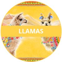 vajilla de melamina Tema Llamas