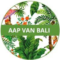 inzameling van melamine serviesgoed Aap van Bali