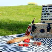 Marine Picnic Hamper for 6 people