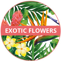 Exotic Flowers Theme Melamine tableware