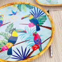 Large dinner plate in melamine  - 28 cm - Toucans of Rio