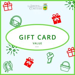 Gift Card to offer