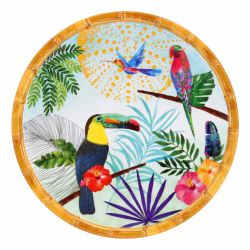 Small dessert plate in melamine - 23 cm - Toucans of Rio