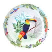 Soup - Pasta plate in melamine  - 20 cm - Toucans of Rio