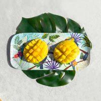 Plat à cake long rectangulaire - mélamine pure - 37,5 cm - Toucans de Rio