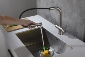 Apala Pull-Out 3-Way Kitchen Filter Tap Brushed Steel & Fountain Premier Ultra Water Filter System