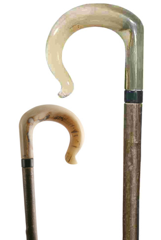 Ramshorn Shepherds' Crook on Long Hazel shaft