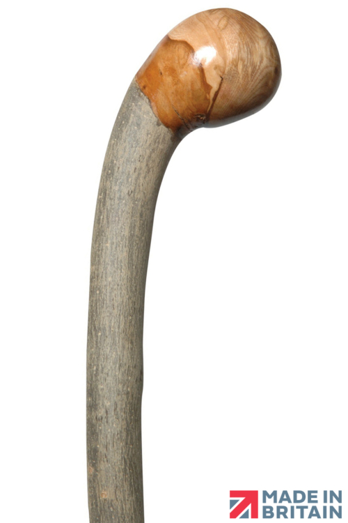 FSC Ash Coppice Knob Walking Stick - Stout