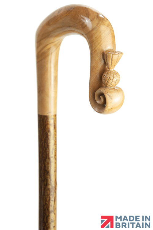 Handmade Olive Wood Shepherd's Crook with Curl Nose on Hazel