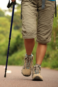Black Adjustable Trekking Pole with Shock Absorber