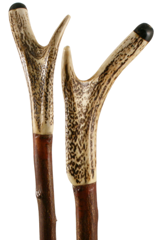 Staghorn Antler Thumbstick on Applewood with Buffalo Horn Tip