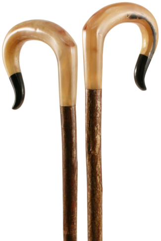 Hand Carved Ram & Buffalo Horn Nose Shepherds Crook on Hazel Shaft