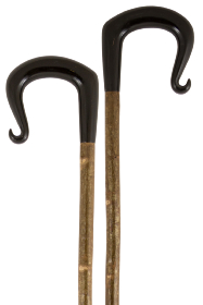 Handcrafted Buffalo Horn Shepherds Crook with Curled Nose