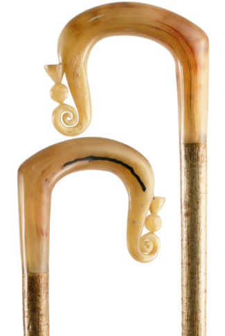 Hand Carved Rams Horn Shepherds Crook with Thistle Nose on Hazel Shaft