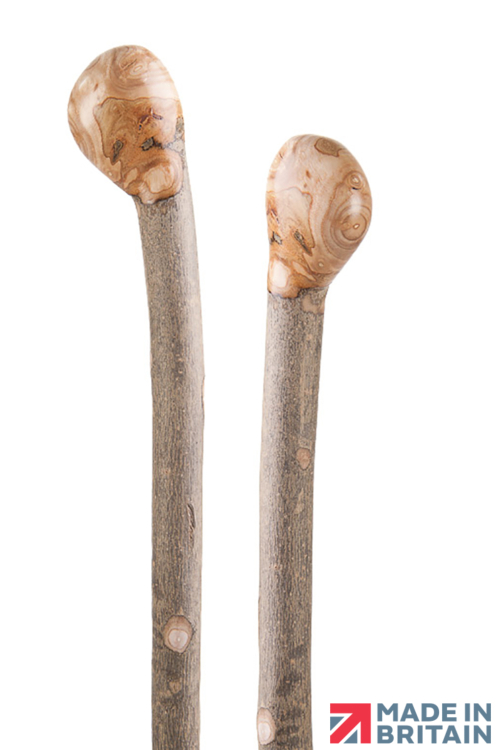 FSC Ash Coppice Knob Hiking Stave