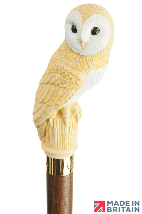 Barn Owl headed Collectors Cane