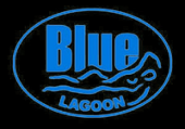 Blue Lagoon Pro Pool  UV Timer System
