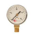 Cintropur Replacement Pressure Gauge 0-20 Bar - NW50/62 & NW75