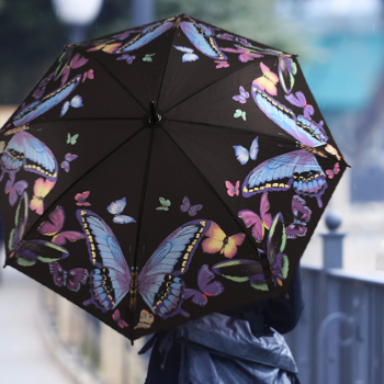 Butterfly Art Umbrellas