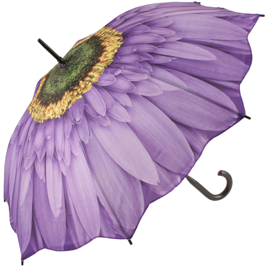 Galleria Art Print Walking Length Umbrella - Purple Gerbera