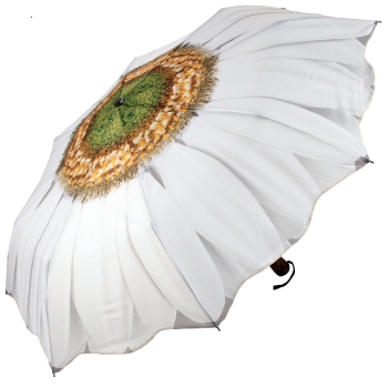 Galleria Art Print Auto Open & Close Folding Umbrella - White Daisy