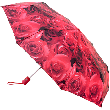 Fulton Open & Close 4 - Auto Folding Umbrella - Photo Rose Red