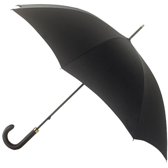 Fulton Minister - Executive Walking Length Umbrella