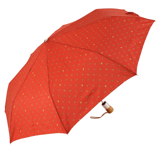 Julie Dodsworth Auto Open & Close Folding Umbrella - Rosebud