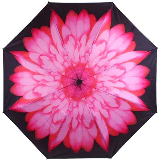 Reverse Auto Open & Close Folding Umbrella - Pink Daisy