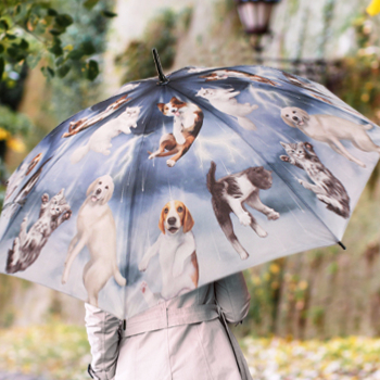 Dog & Cat Art Umbrellas